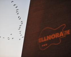 ELLNORA 2009