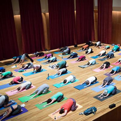 ELLNORA yoga